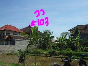 Dscf9225